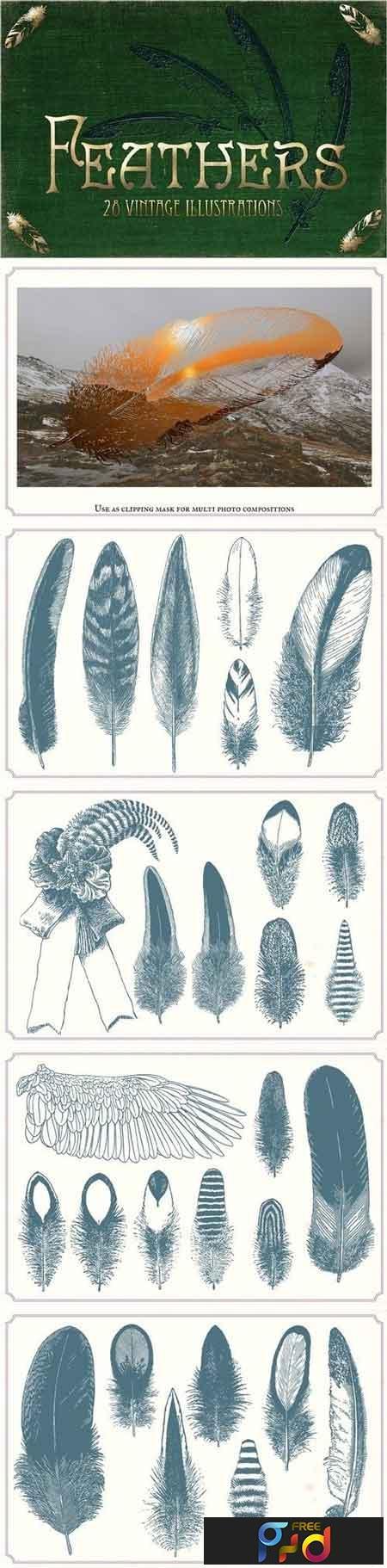 Vintage Feathers 1253113 1