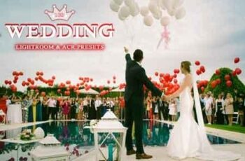 Wedding Lightroom & ACR Presets 3516648 3