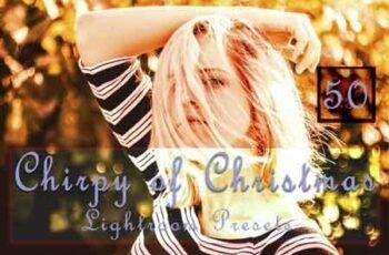 Chirpy of Christmas Lightroom Presets 3512238 5