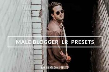 MALE BLOGGER LR MOBILE PRESETS 3290086 3