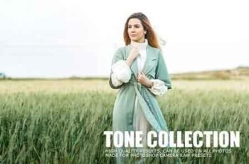 Tone Collection PS & RAW Actions 1018274 5