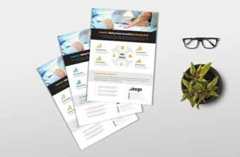 Multipurpose Business Flyer 2793235 2