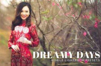 Dreamy Days Lightroom Mobile Presets 3325362 6