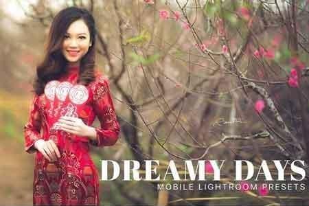Dreamy Days Lightroom Mobile Presets 3325362 - FreePSDvn