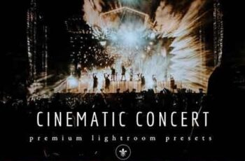 Cinematic & Moody Concert Lightroom Presets 3518988 5