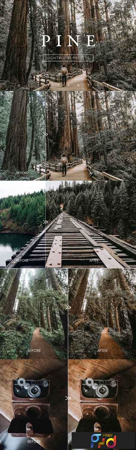 PINE Warm Moody Lightroom Presets 3335215 - FreePSDvn