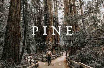 PINE Warm Moody Lightroom Presets 3335215 7