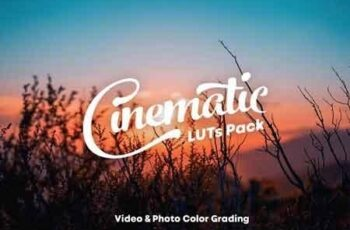 Cinematic LUTs Pack 3335433 4