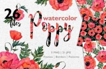 Red Poppy Watercolor PNG JPG 3206630