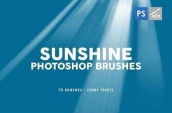 75 Sunshine Photoshop Stamp Brushes 4