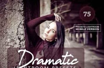 Dramatic Lightroom Presets 3523399 5