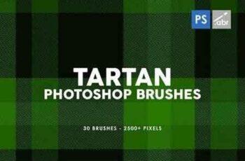 30 Tartan Photoshop Stamp Brushes 6