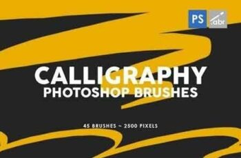 45 Calligraphy Photoshop Stamp Brushes 10