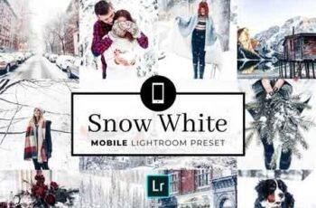 Mobile Lightroom Preset Snow White 3320020 6