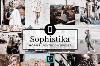 Mobile Lightroom Preset Sophistika 3320016 6