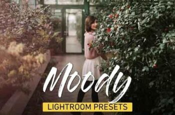 Moody Lightroom Presets Bundle 3320760 4