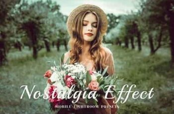 Nostalgia Mobile Lightroom Presets 3362345 6
