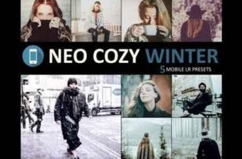 Neo Cozy Winter mobile lightroom presets 4