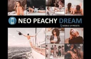 Neo Peachy Dream mobile lightroom presets 2
