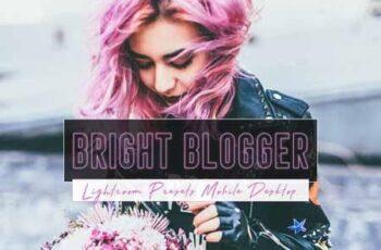 Bright Blogger Lightroom Presets 3361545 6