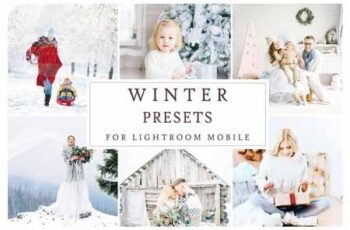 Lightroom Mobile WINTER PRESETS 3405210 3