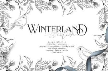 Winterland collection 3191846