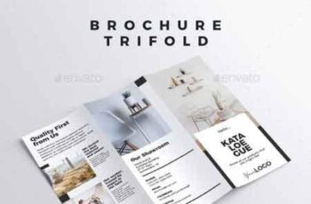 Brochure - Trifold 22878094 2