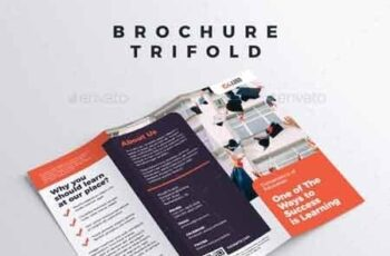 Brochure - Trifold 22879400 3