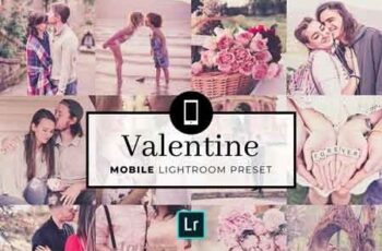 Mobile Lightroom Preset Valentine 3413205 6