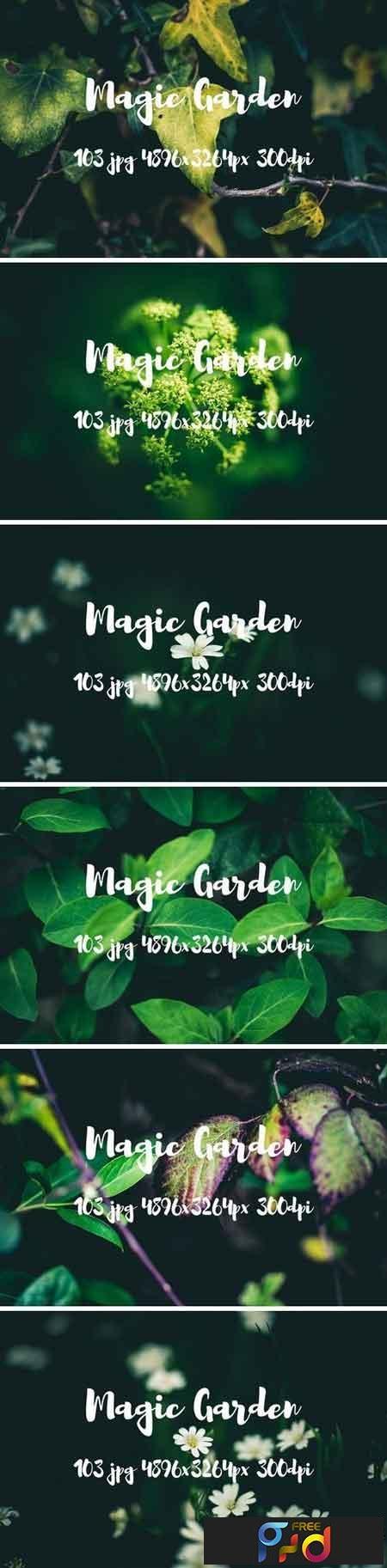Magic garden pack 2482487 1