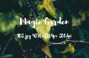 Magic garden pack 2482487 5