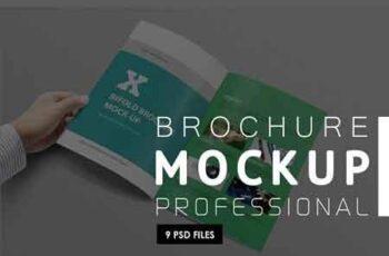 Brochure Mock-ups 3171014 3