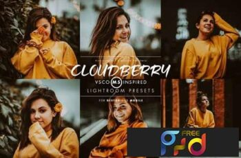 Cloudberry Lightroom Preset 3415912 4