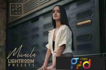 Micaela Portrait Presets 3381133 4