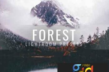 Lightroom Presets Moody Forest 3336411 6