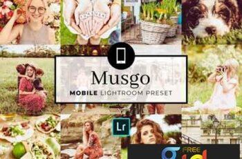 Mobile Lightroom Preset Musgo 3336724 4