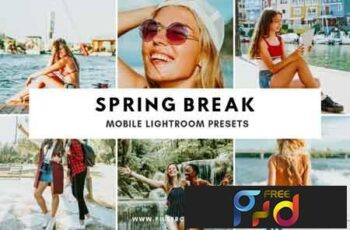 Spring Break Mobile Lightroom Preset 3505966 6