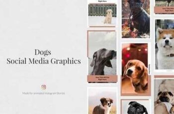 Dogs Animated Instagram Stories 3436046 5