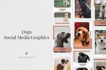 Dogs Pinterest Posts 3436042 6