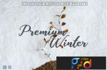 Premium Winter Lightroom Presets 3532749 4