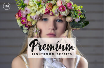 Premium Lightroom Presets 3535430 5