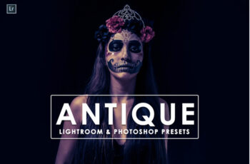 Antique Lightroom & Photoshop Presets 3535431 3