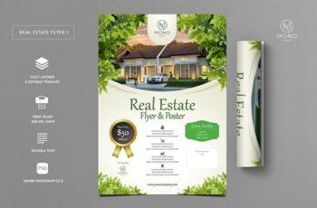 Premium Real Estate Flyer 1 3250104 5