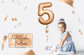 Foil Number Balloons Photo Overlays 3569025 6