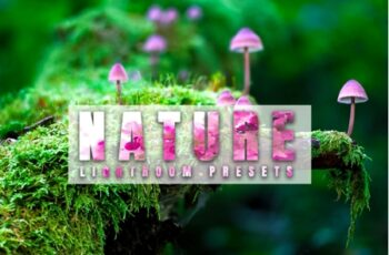 Nature Lightroom Presets 3537118 6