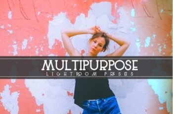 Multipurpose Lightroom Presets 3537146 4