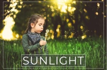 Sunlight Mobile and Desktop Lightroom Presets Pack 3537003 6