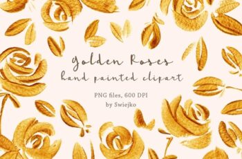 Gold Roses 1230286 6