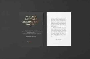 A6 Portrait Flyer, Postcard, Greeting Card Mockup 4