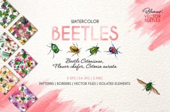 Beetle Cetoniinae,Flower Watercolor 3481327 5